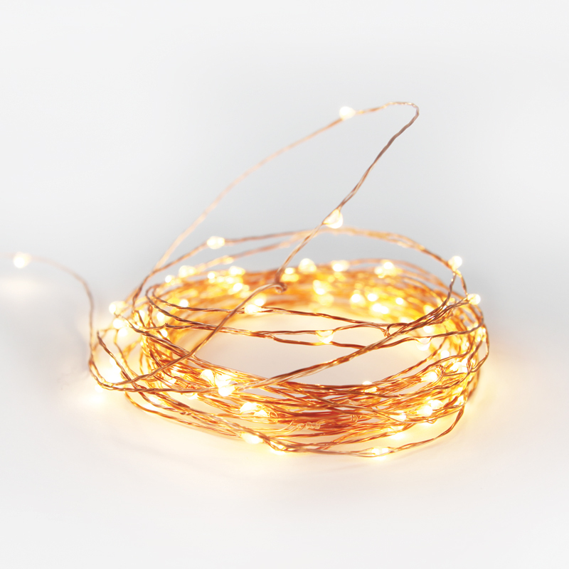 10mt Copper Fairy Lights $20