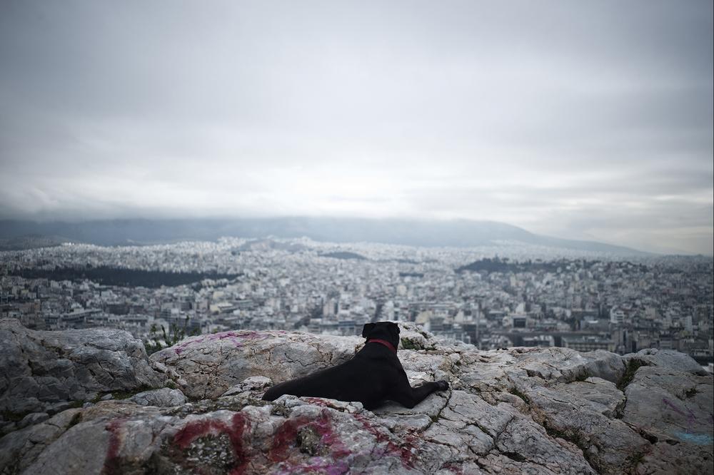 Φωτογραφία: Δημήτρης Μιχαλάκης