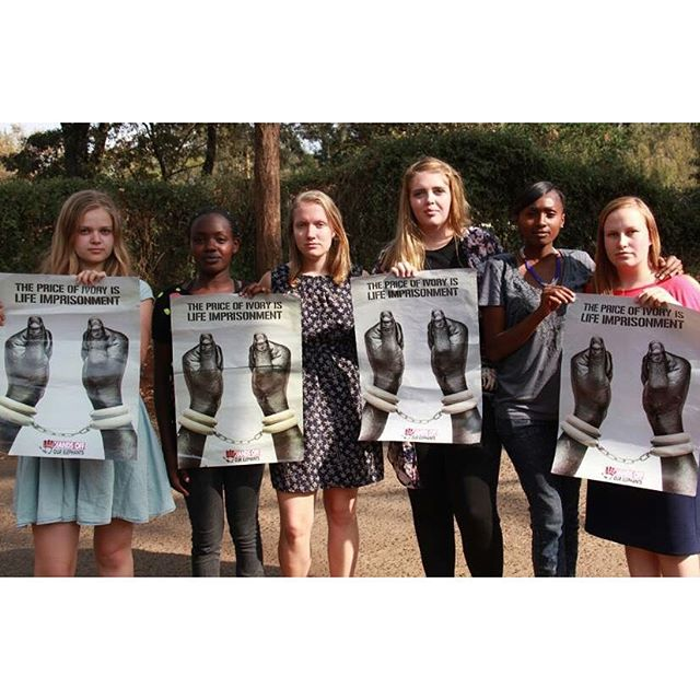 Team Kenya participated yesterday in a music video, a campaign for saving elephants in Kenya, it was really interesting to meet youths with such a strong meaning about something so important! #cfc1516 #fkyouth  Posted by: @kajaamarie