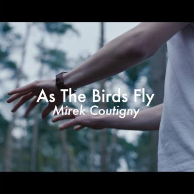 Mirek Coutigny - As The Birds Fly