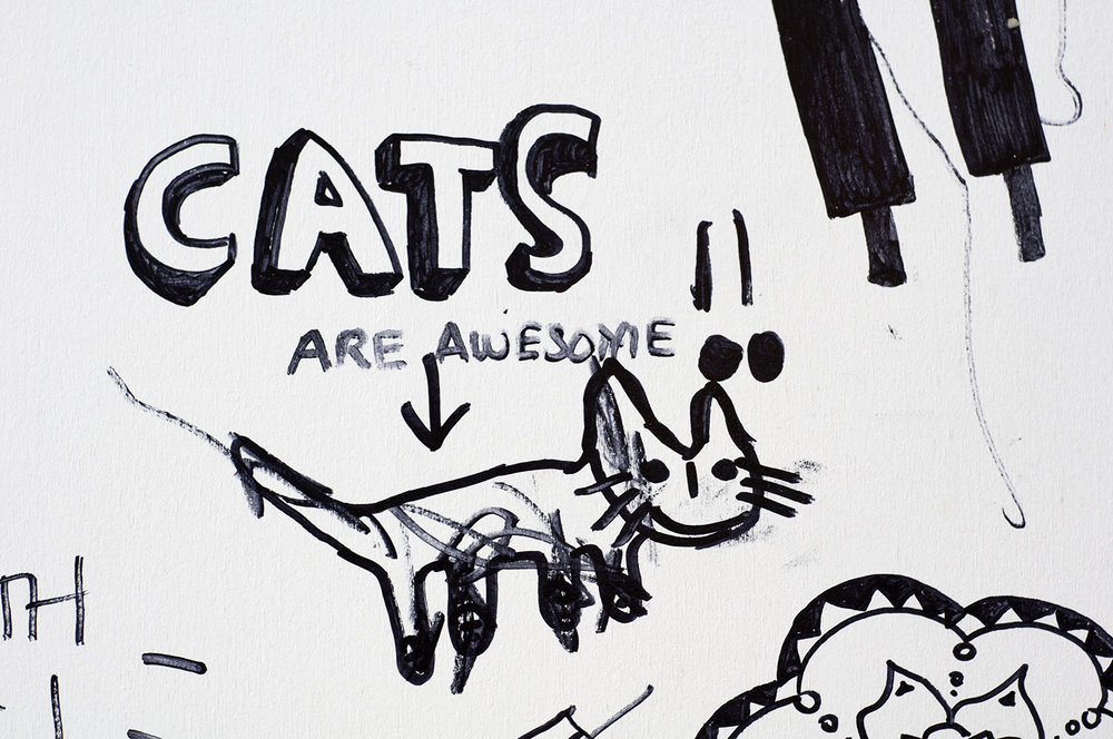 019_catsareawesome.jpg