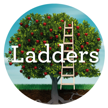 Ladders+pic.png