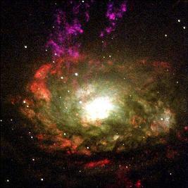 Circinus Galaxy Blackhole