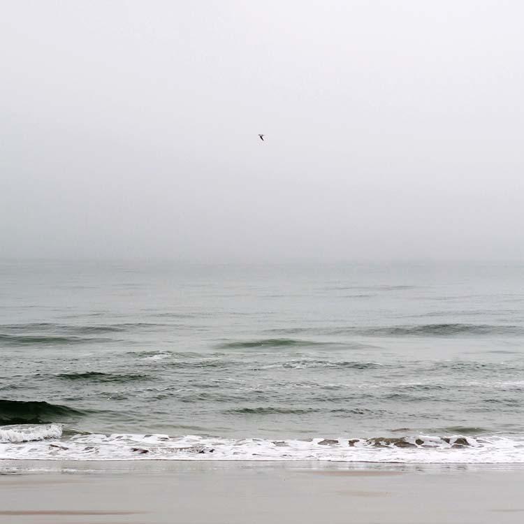 misty beach.jpg