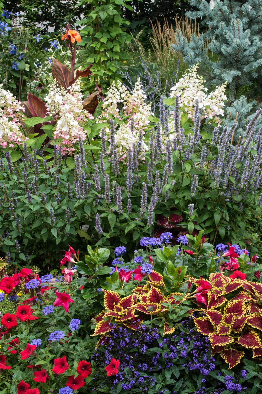 Garden--9.jpg