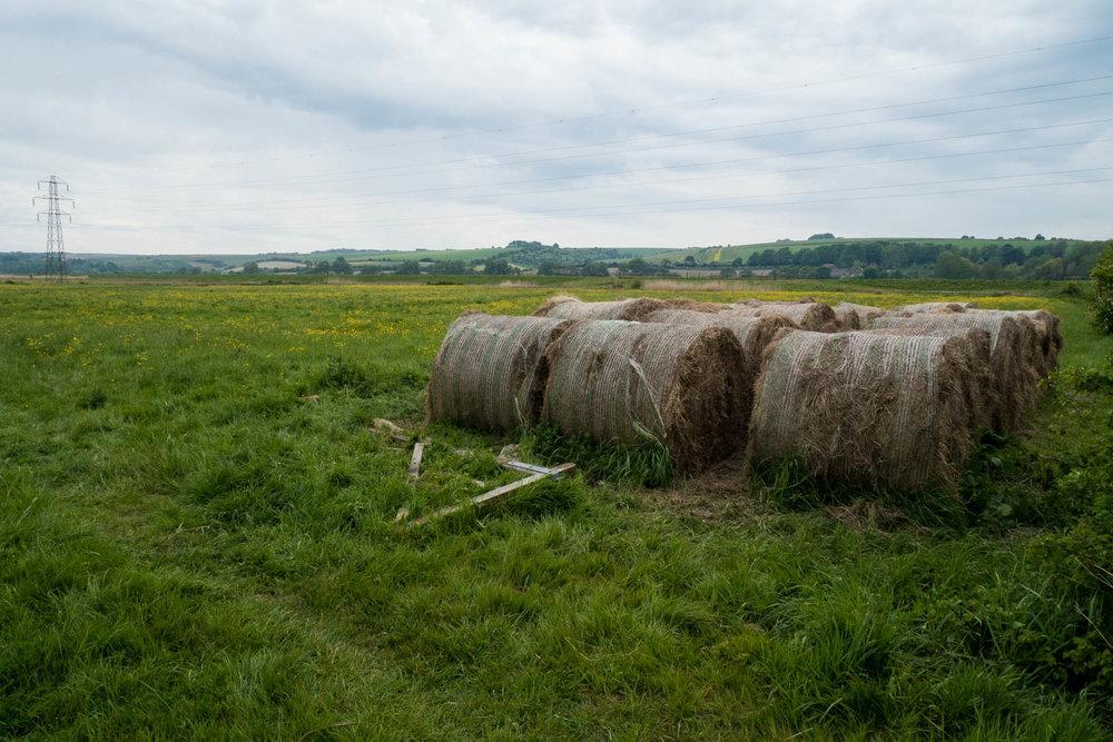 Countryside-1.jpg