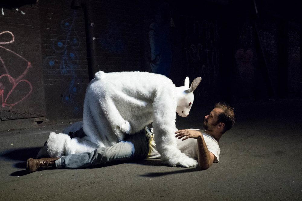 Rabbit (2016)