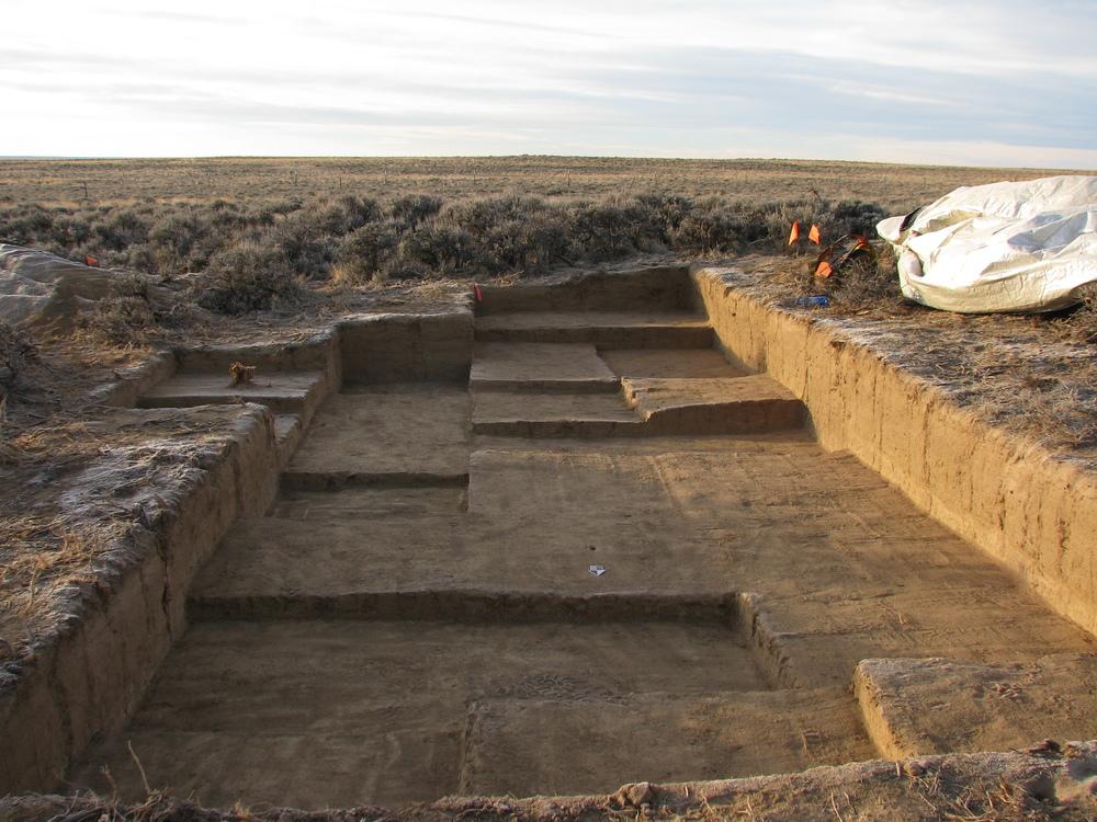 Battle Springs West Site (2012)