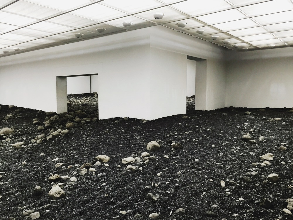 Olafur Eliasson's the  Riverbed .