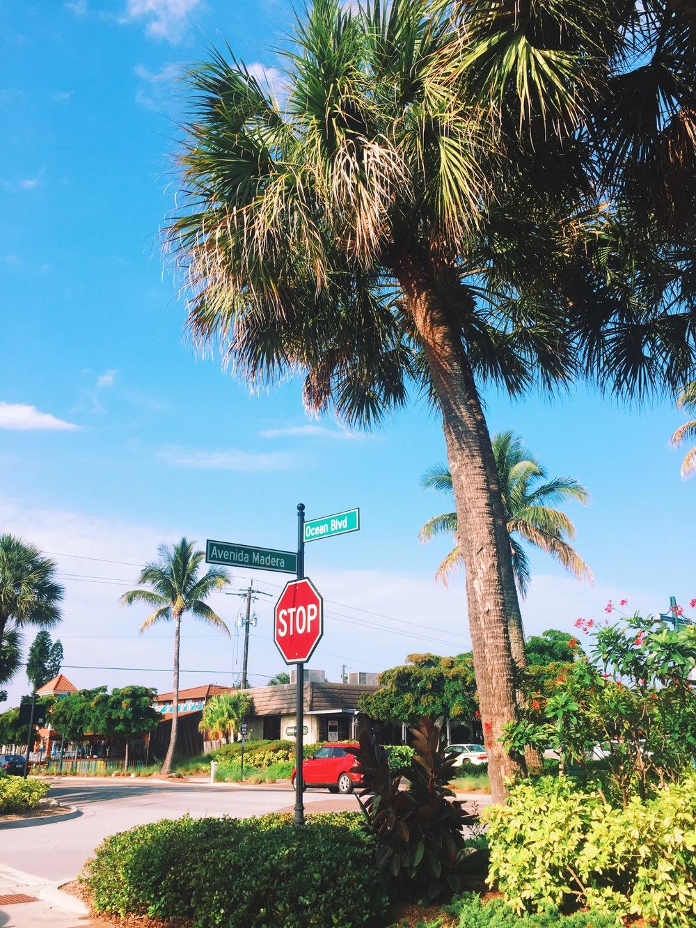Ocean Avenue.
