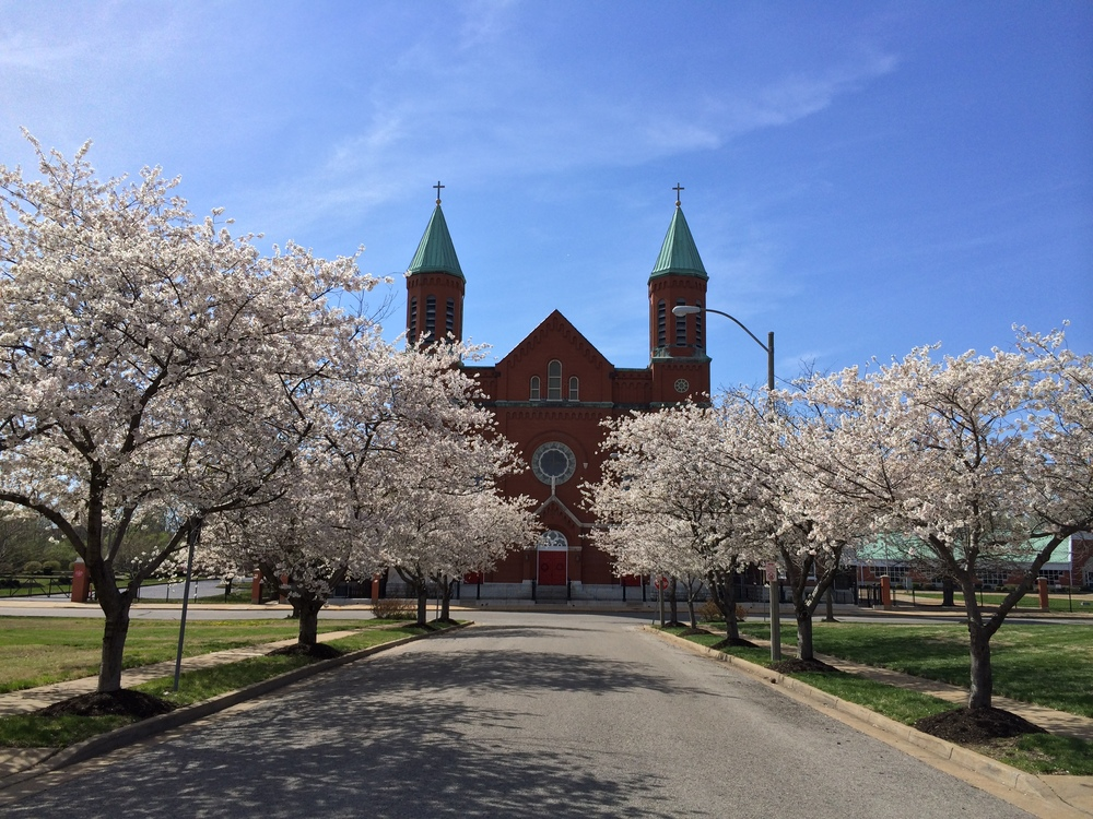 Spring in the Neighborhood: Just around the corner from Flance is the beautiful St. Stanislaus Church.