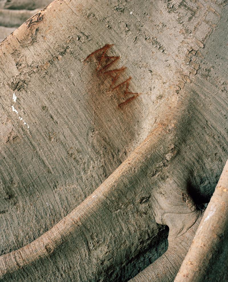 olivereglin-markings-04-bulgandry.jpg