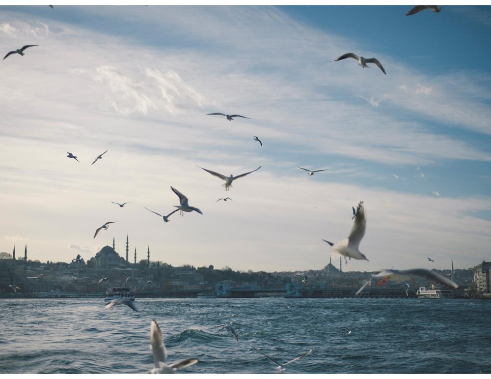 istanbul-wedding-29_1.jpg