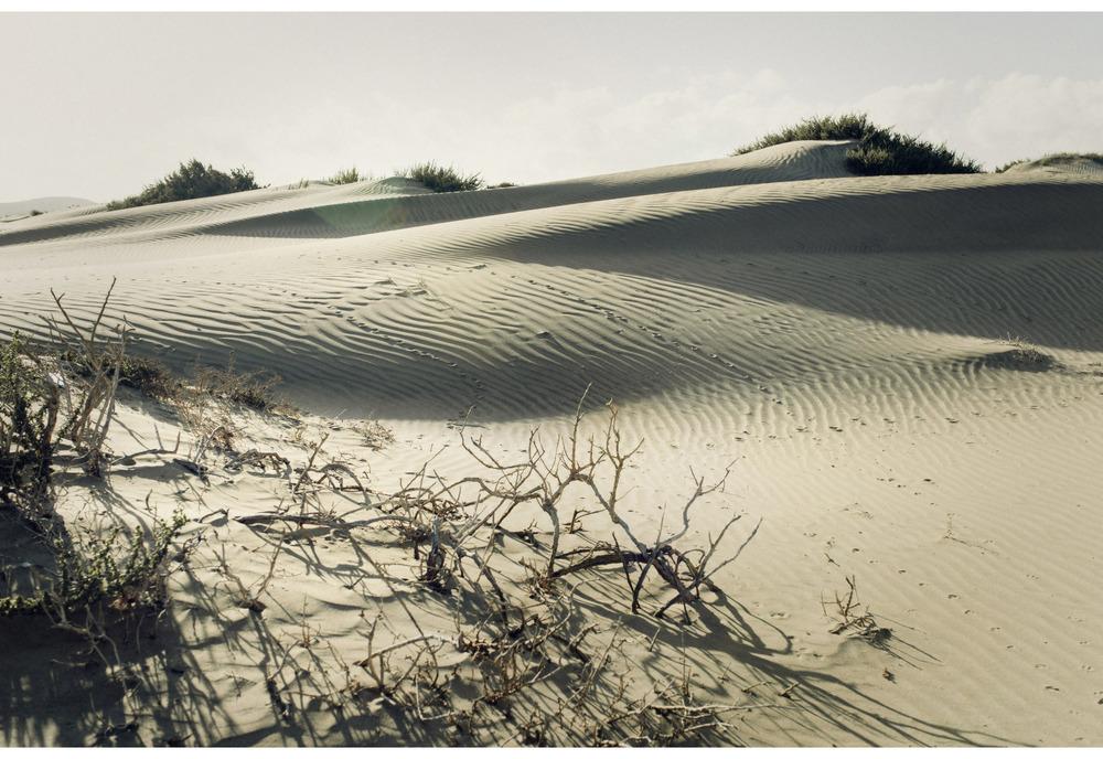 Fumeke-Famara-Lanzarote13.jpg
