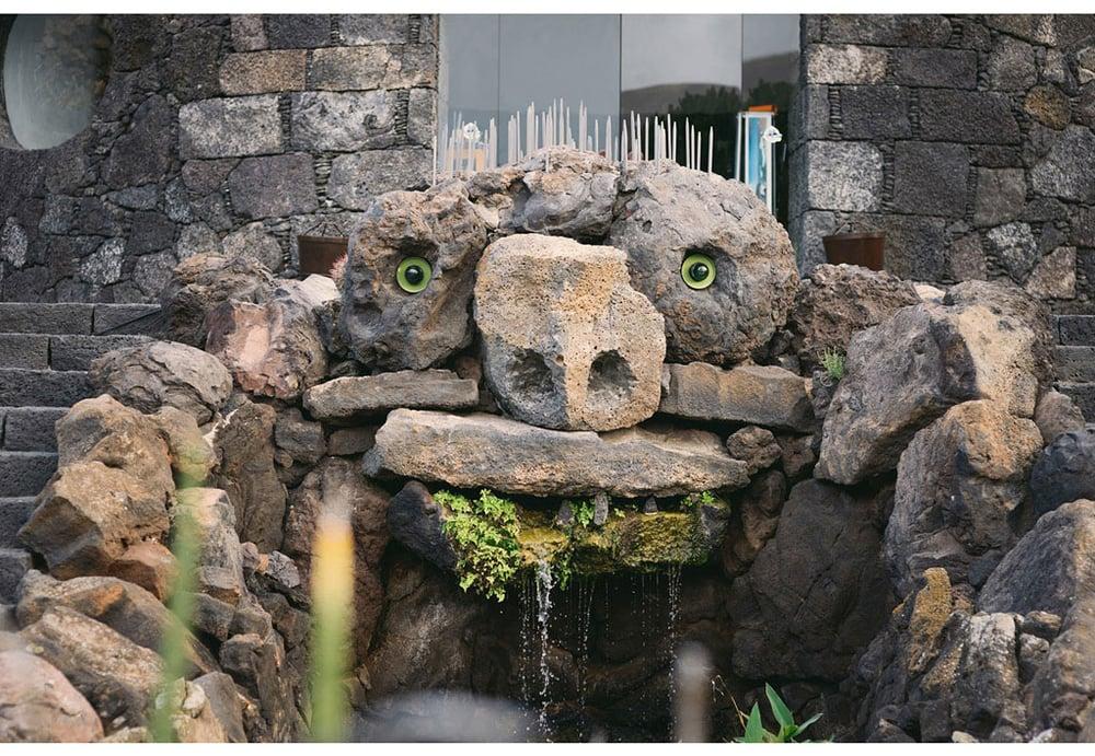 022-boda-diseño-jardin-cactus.jpg
