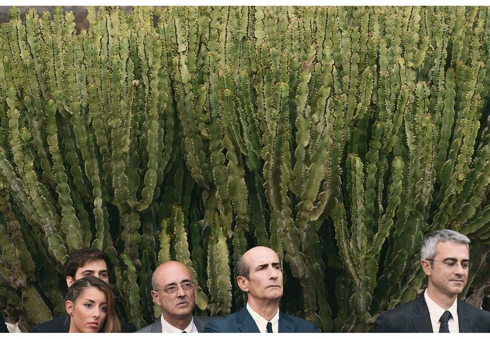033-boda-diseño-jardin-cactus.jpg