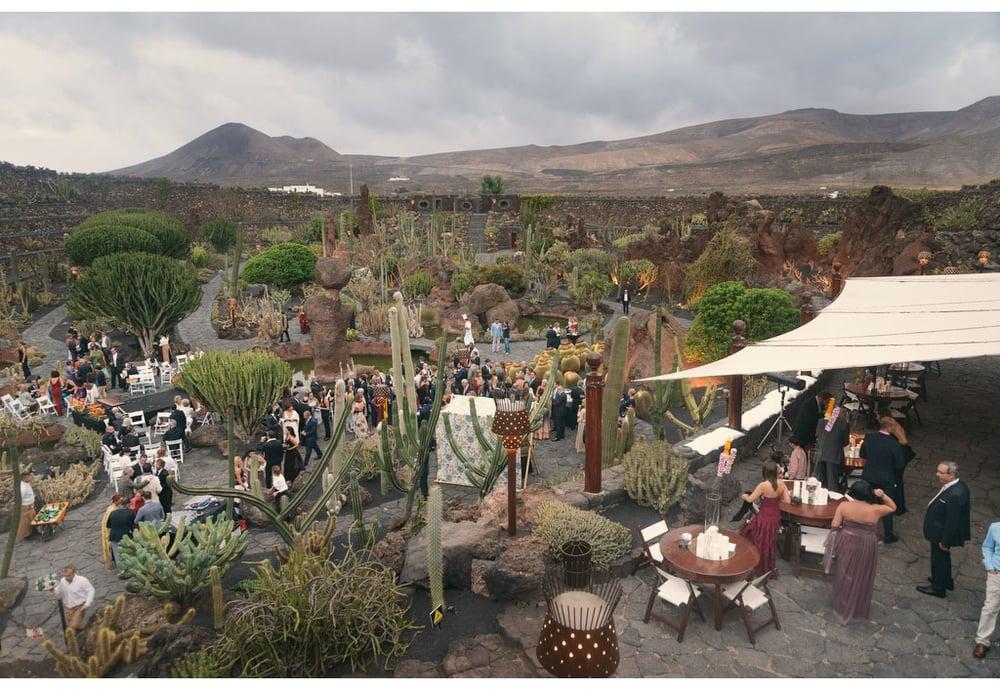 039-boda-diseño-jardin-cactus.jpg
