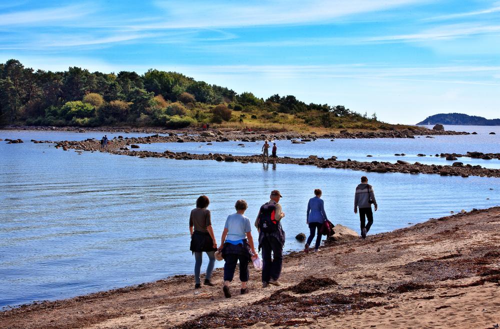 En helt spesiell opplevelse på Larkollen er det å spasere på den 300 m lange naturlige moloen over til øya Danmark. Navnet har denne lille øya fått på grunn av at den rike og vakre vegetasjonen gir assosiasjoner til Danmark. Husk at det bare er når det er lavvann at du kommer deg tørrskodd over.