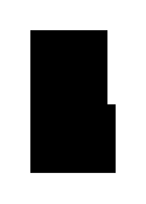 Attraksjoner-logo-black copy 500 wide.png