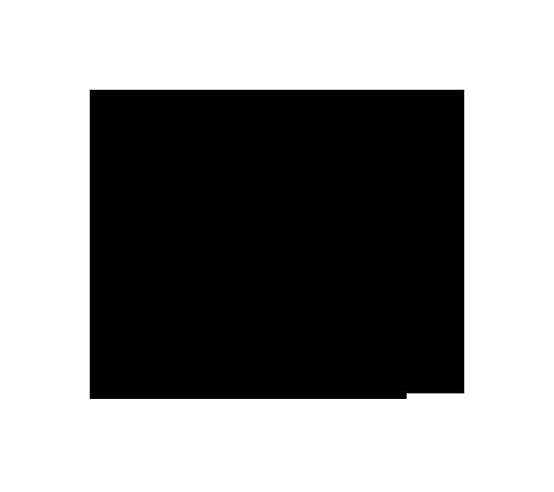 Spise & Drikke-logo-black copy 500 wide.png