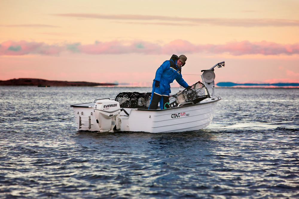 Enkel og ujålete båt for fiskere og hyttefolk.    STING 535 PRO      LES MER