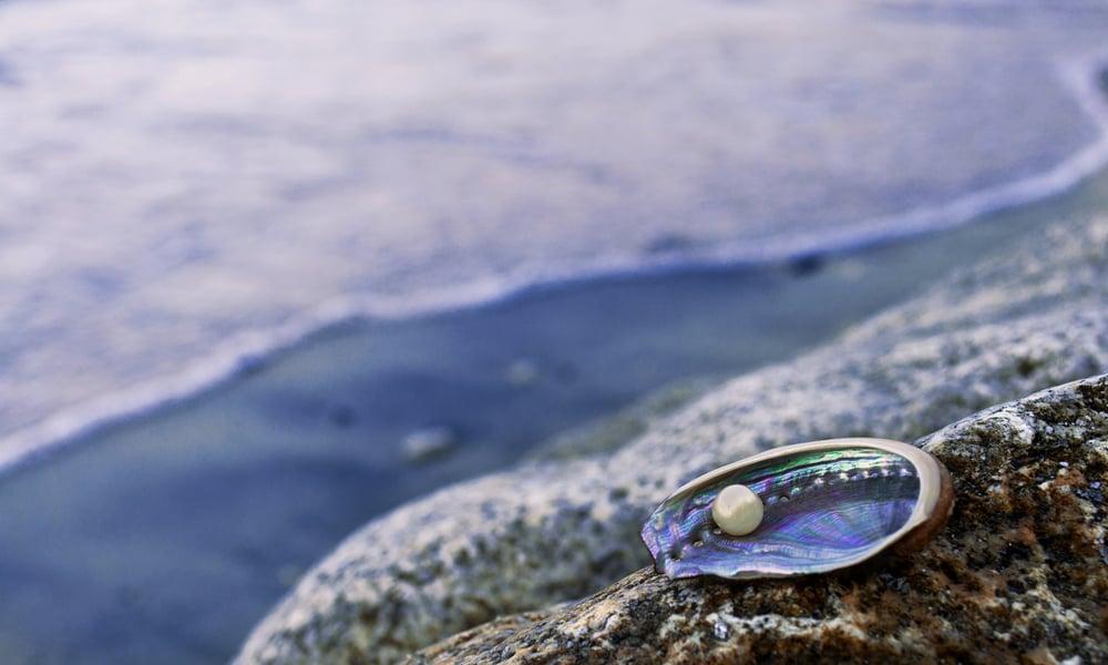 Perlefiskerne