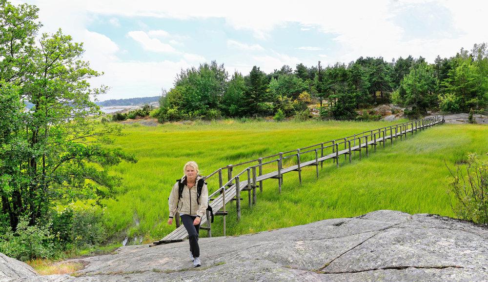 Gå Norges lengste kyststistrekning    KYSTSTIEN I ØSTFOLD    SE HER