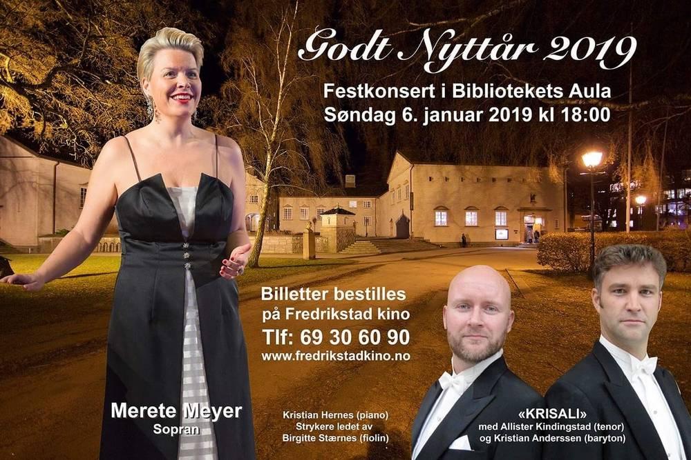 Merete Meyer 2.jpg