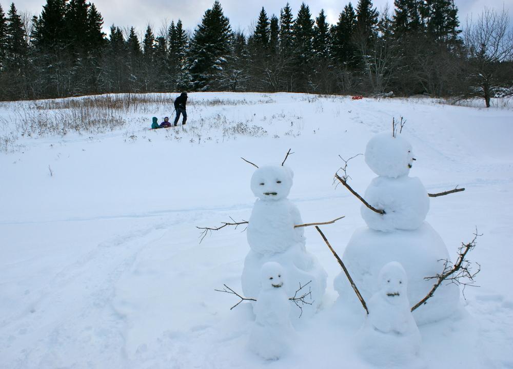 Human family, snow family