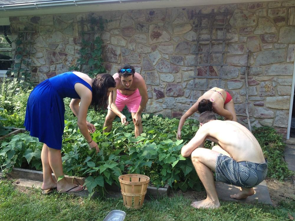 PA - MCJ home - Gardening 2.JPG