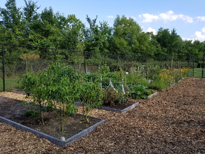 The City's largest urban garden with 40 community garden plots in the Old Town neighborhood in the City of College Park, Maryland..