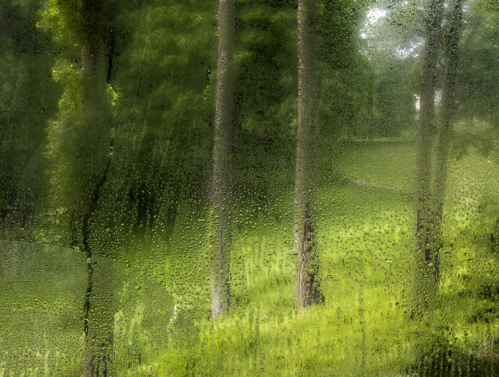GlassHouse_Fog_433crop.jpg