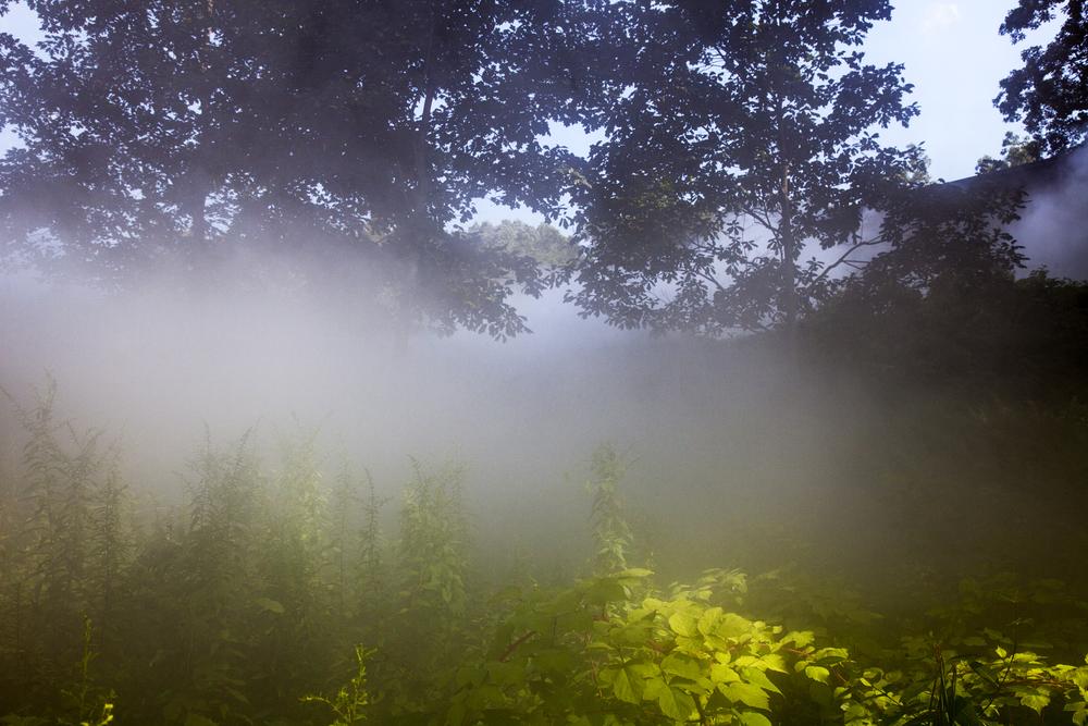 GlassHouse_Fog_0622.jpg