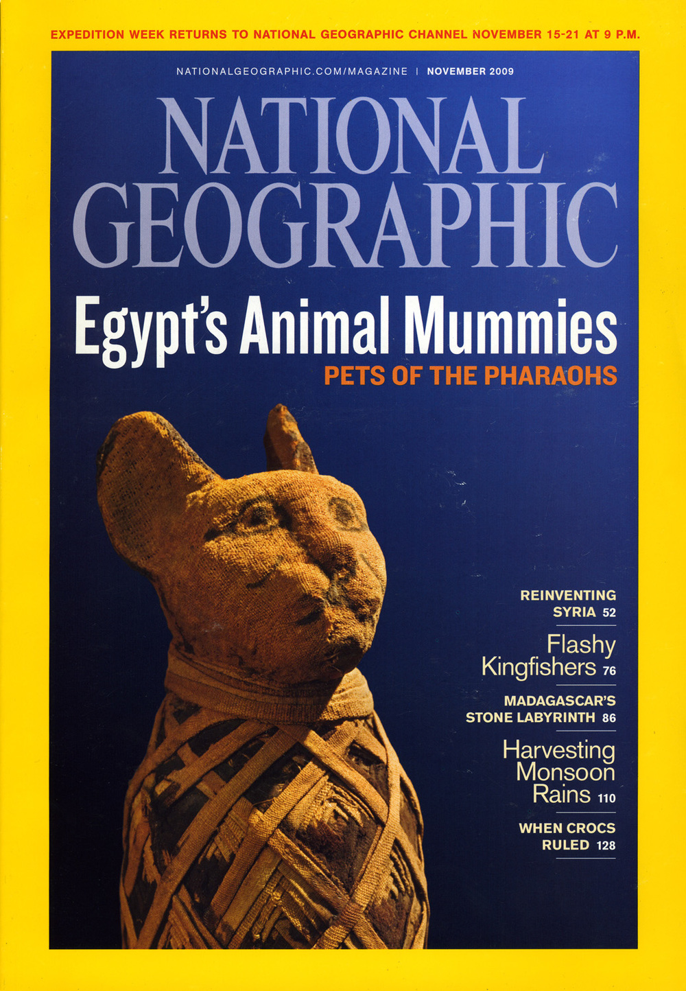 animalmummies_001.jpg