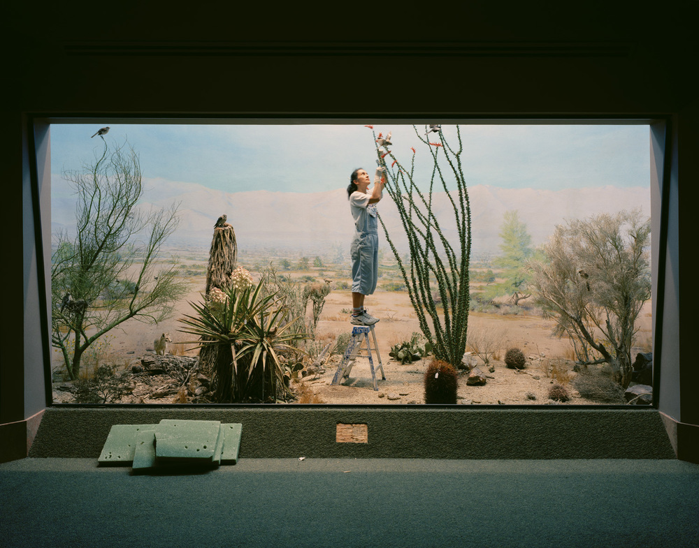 Desert Scene With Woman and Coyote, 2005