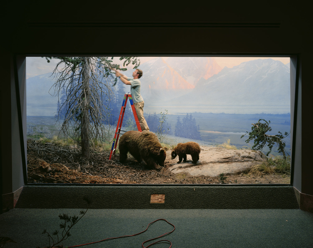 Mountain Scene With Man and Bears, 2005