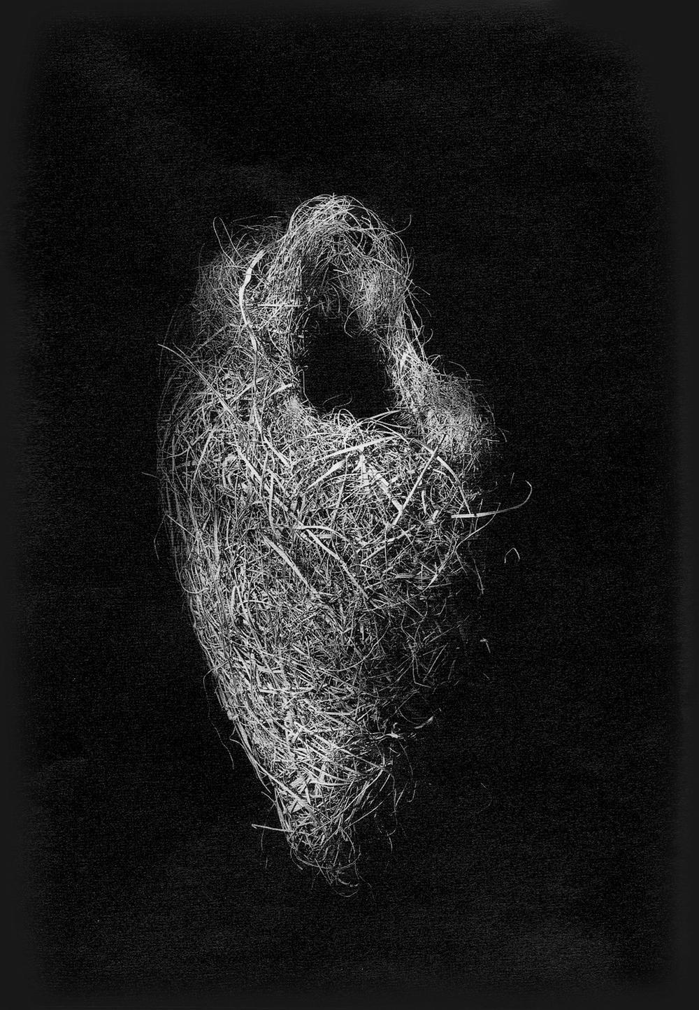 Nest #16, 2000
