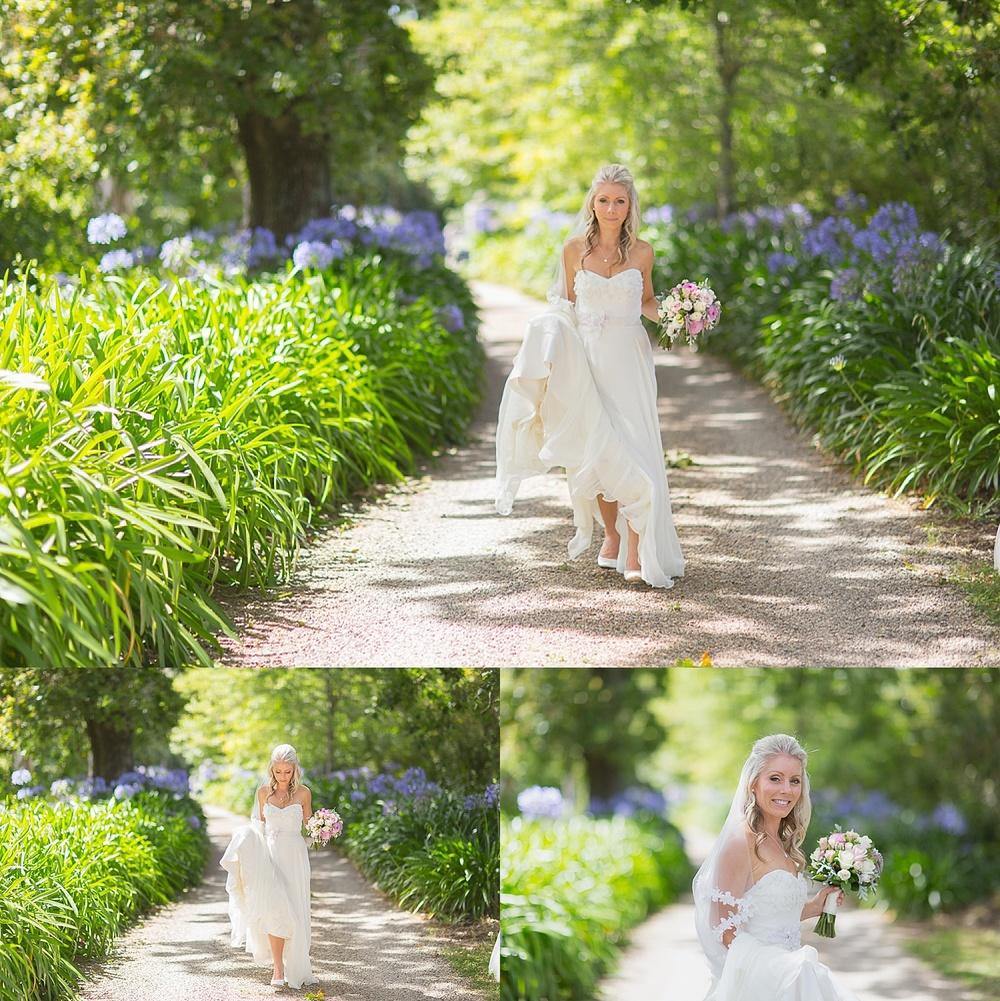 Cassels-wedding-auckland0050.jpg