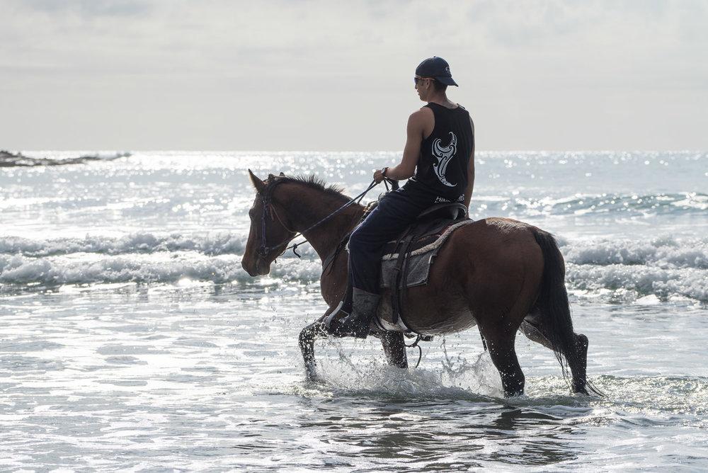 hinerupe_horseman_wb.jpg
