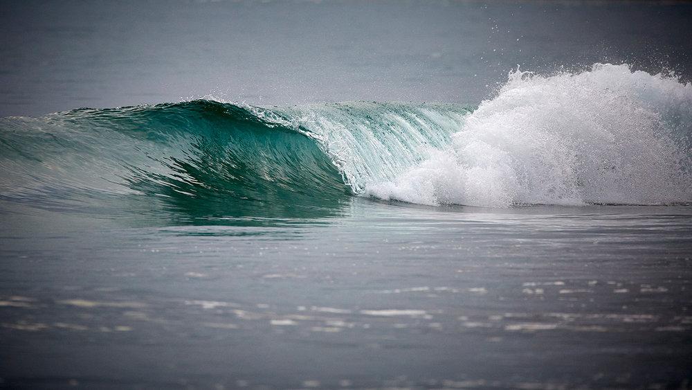 wave_wb.jpg