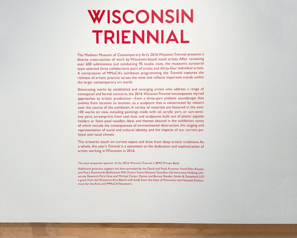 Helen_Hawley_MMoCA_Wisconsin_triennial.jpg