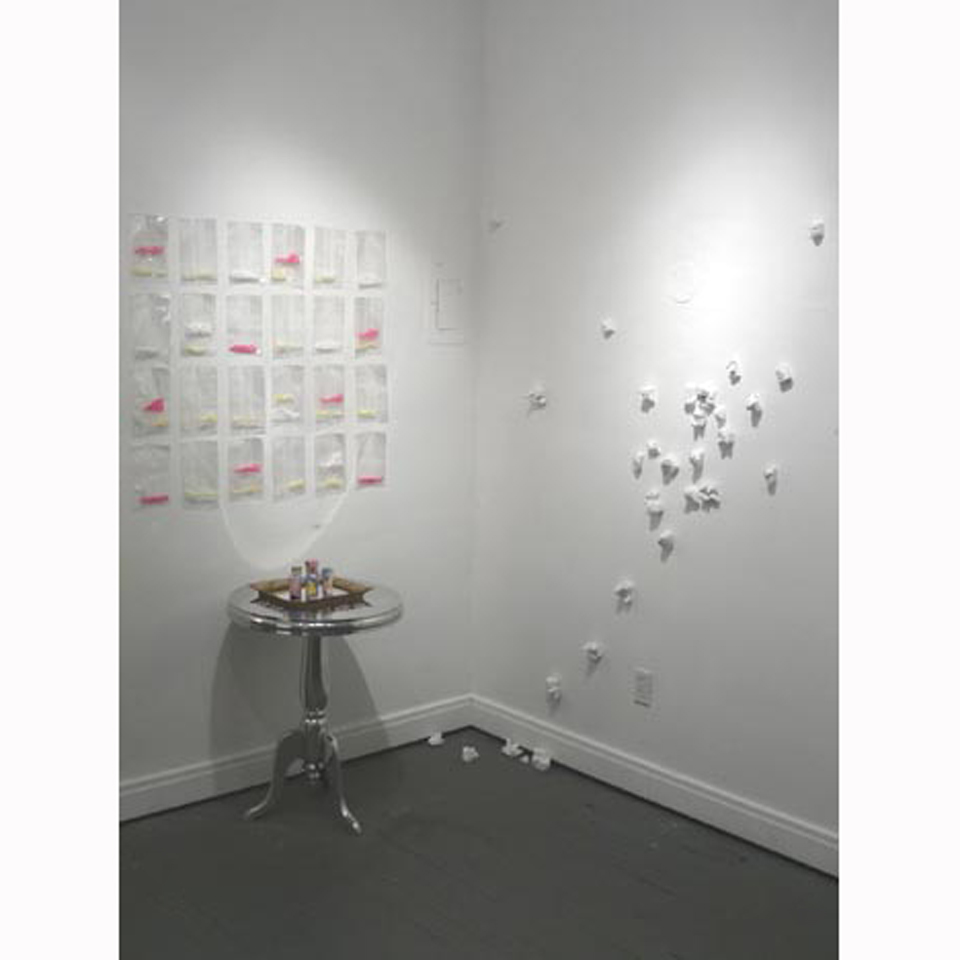 Installation View with A PAXIL A DAY