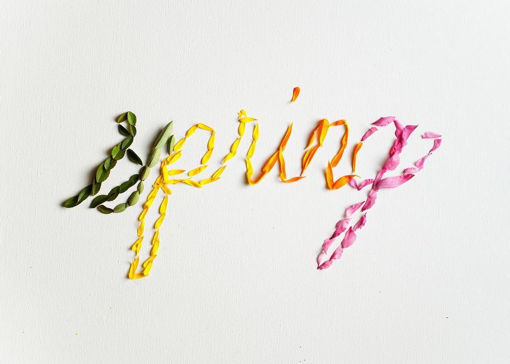 Spring Floral Lettering