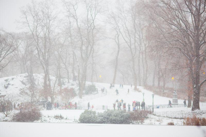 centralpark-snow-800wi.jpg