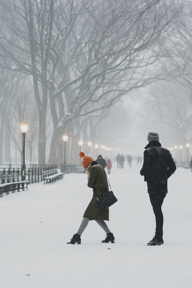 central-park_couple_snow-800wi.jpg