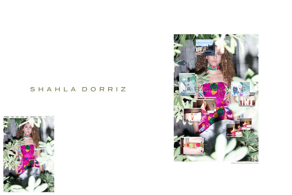 Shahla Dorriz Archives