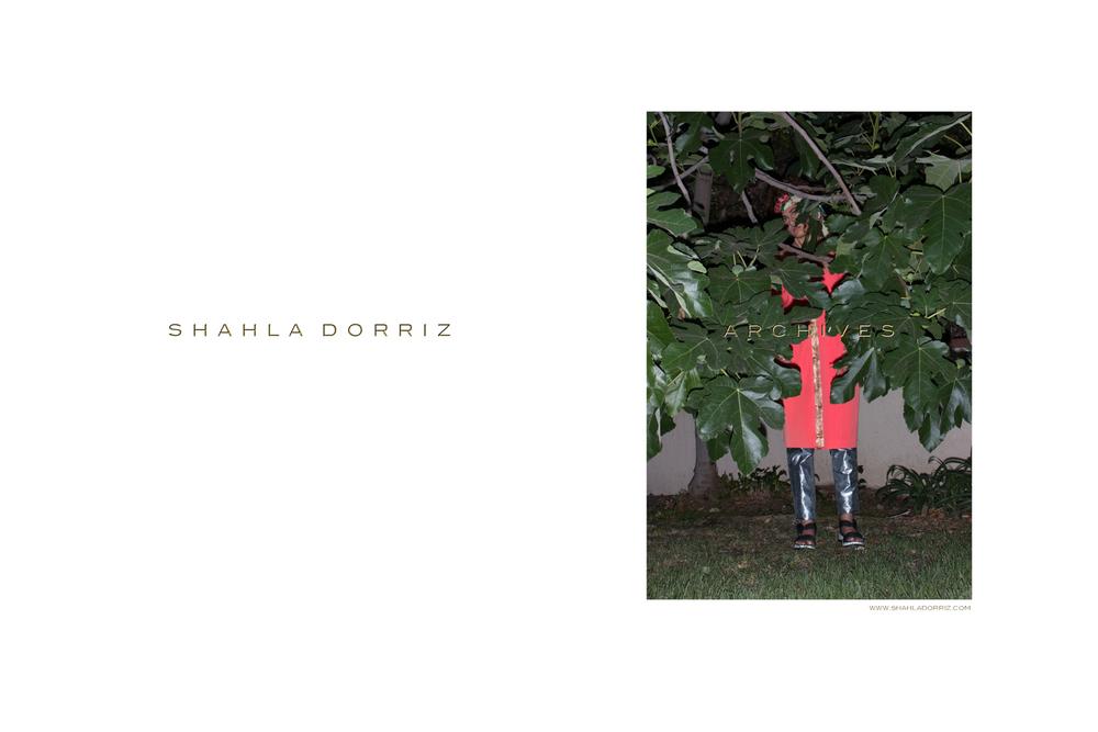 shahla-dorriz-alexandre-dorriz-photography-archives-hand-painted-orange-silver-5.jpg
