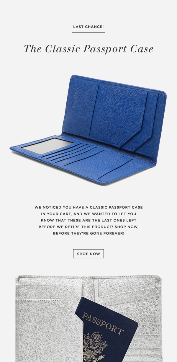01_email_abandonedCart_passportCase.jpg