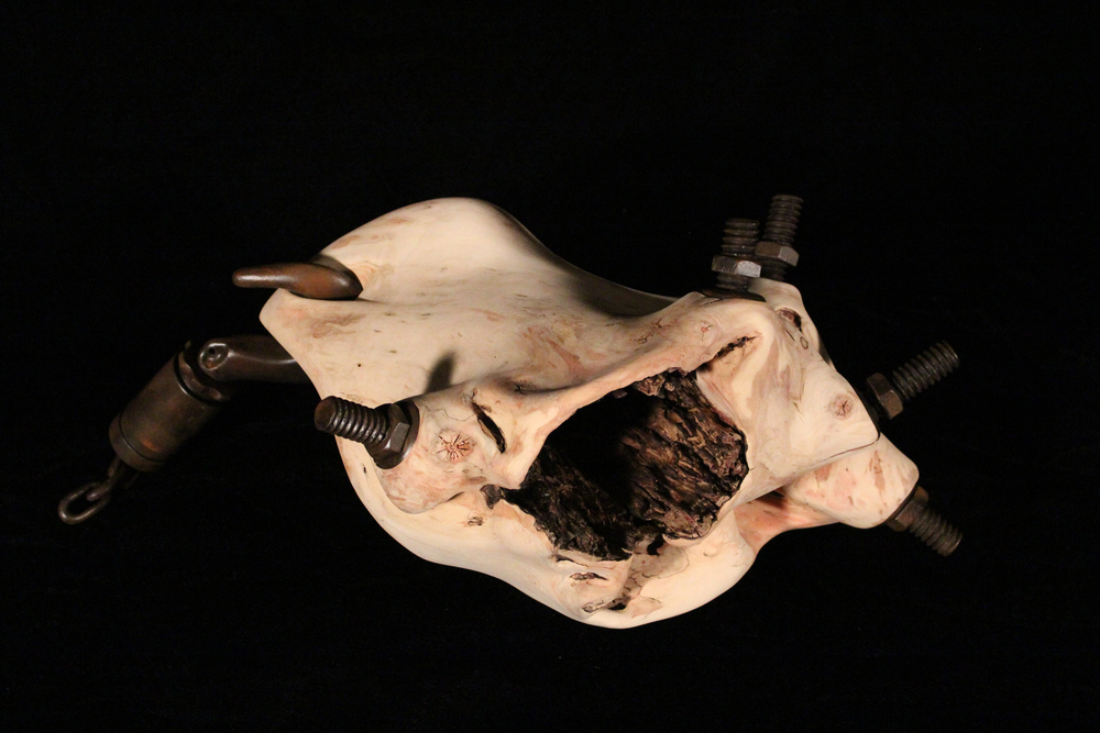"Betrayal, 2014. 9"" x 21"" x 16"". Carved Spalted Box Elder, Maple, Yellowheart, Basswood, Purpleheart."