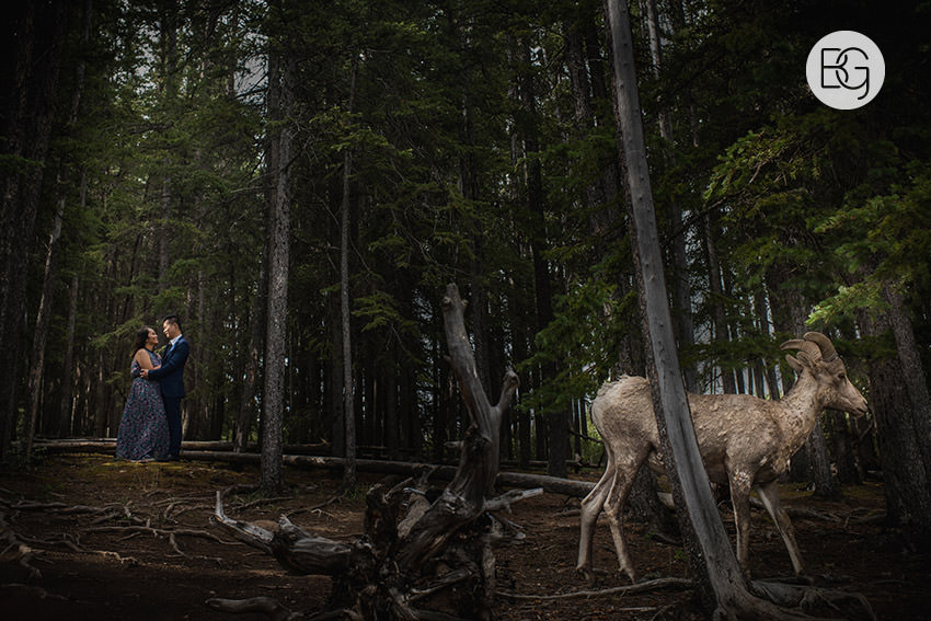 Banff_wedding_photographers_engagement_AngelaWandy_11.jpg